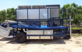 Agriculture - Mango Picker